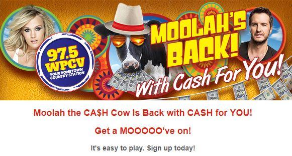WPCV 97.5 FM CA$H Cow Contest