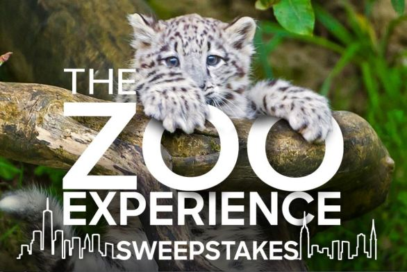 Animalplanet-Zoo-Sweepstakes