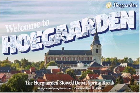 Hoegaardenspringbreak-Contest