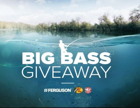 Ferguson-Big-Bass-Giveaway