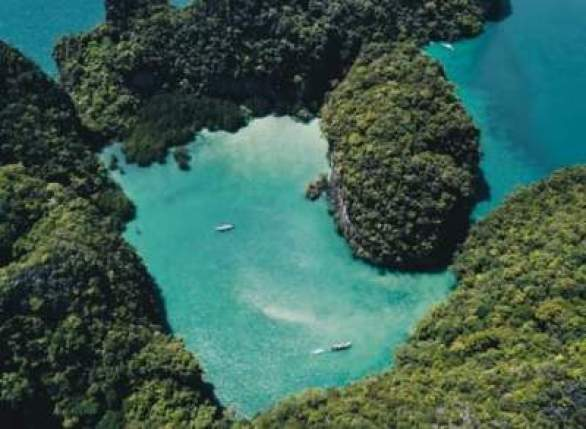 Frankandoak-Fiji-Giveaway
