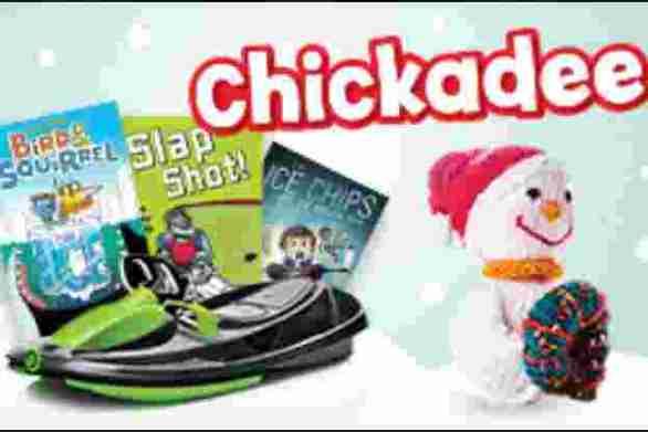OwlKids-Chickadees-Snowless-Snowperson-Contest