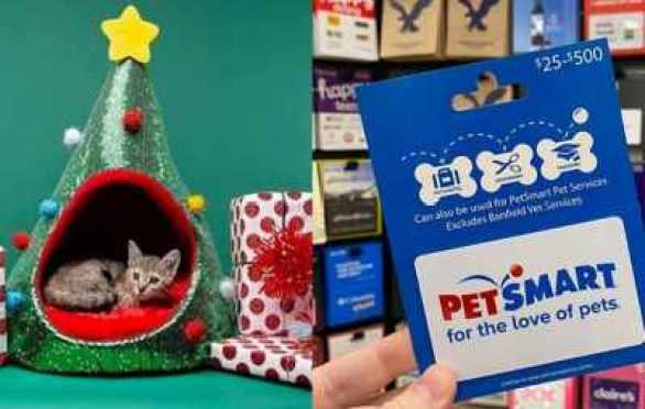 PetSmart-Holiday-Pet-Hut-Sweepstakes