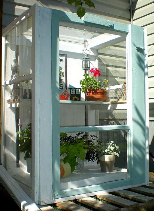 Mini Greenhouse Made Windows