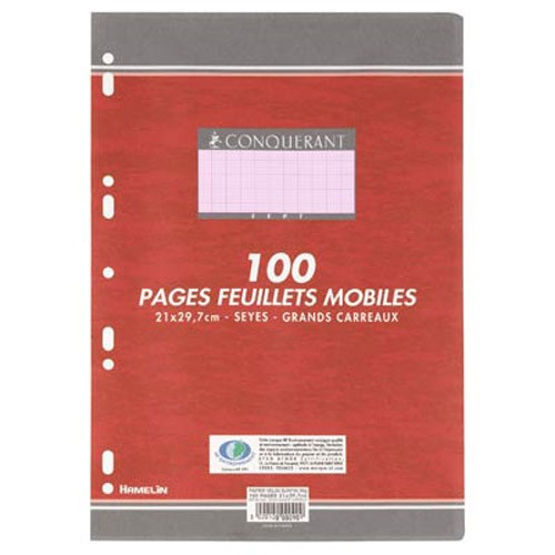 feuilles simple couleur seyes a4 100 pages rose