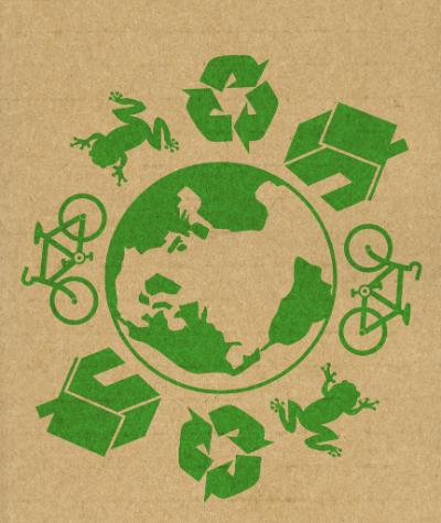 fun sustainability