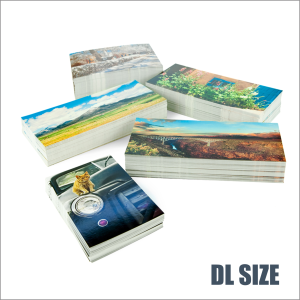 POSTCARDS PRINTING [ DL SIZE ]