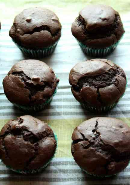 Gluten Free Double Chocolate Muffins