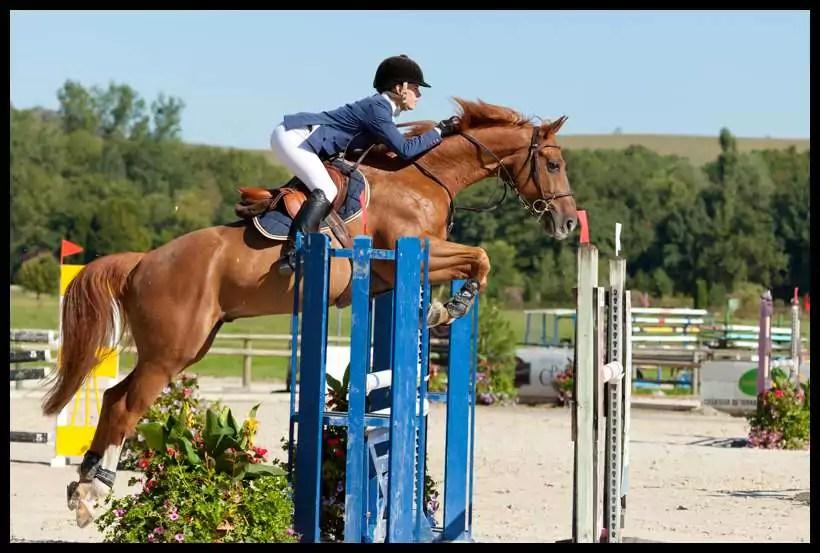 Vittel-Terre-de-cheval-©-JF-HAMARD-Vittel