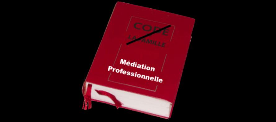 La médiation familiale, sectorisation et méconnaissance
