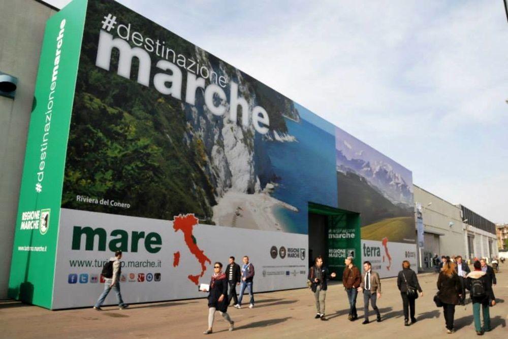 2019: il Vinitaly dei record, Marche e Piceno al top | Offida.info