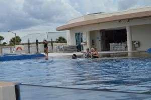 Dolphin Enclosure