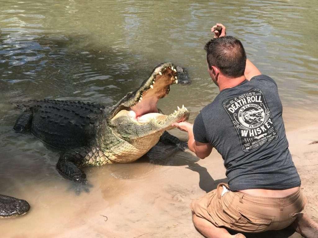 Wild Florida Gator Week