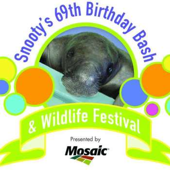 Celebrate Snooty's Birthday Tomorrow At The South Florida Museum!!