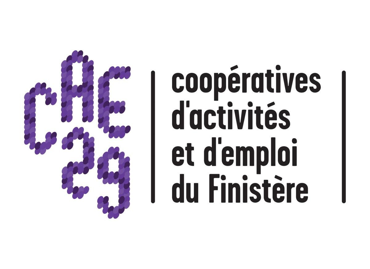 CAE 29