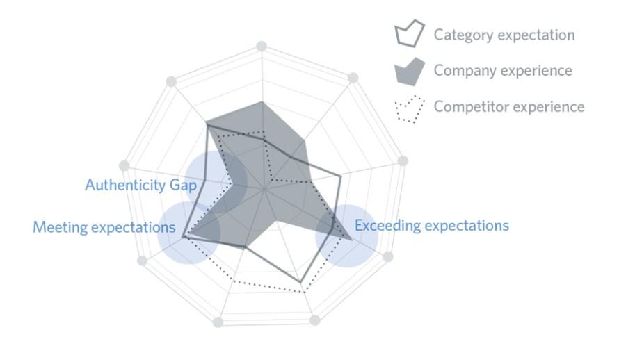 Authenticity gap - očekávání vs. reálná zkušenost