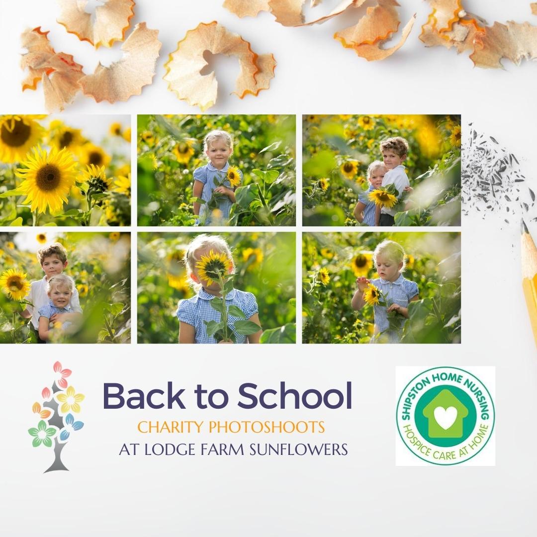 Back to School sunflower photoshoots Warwickshire