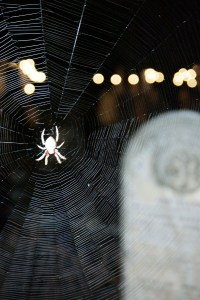 You never know what will jump out at you from the tombstones on the Night Tour at Death Over Dinner events!