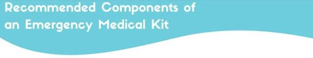 emergency medical kit components