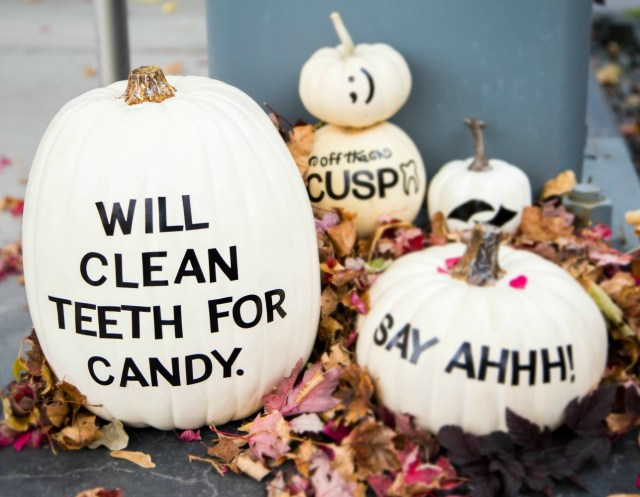 white dental themed pumpkins