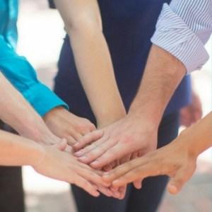 Building cohesive dental teams