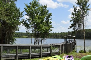 Lake Louisa State Park Near Clermont Offthefloridapath Com