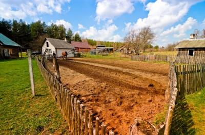 homestead -- first steps