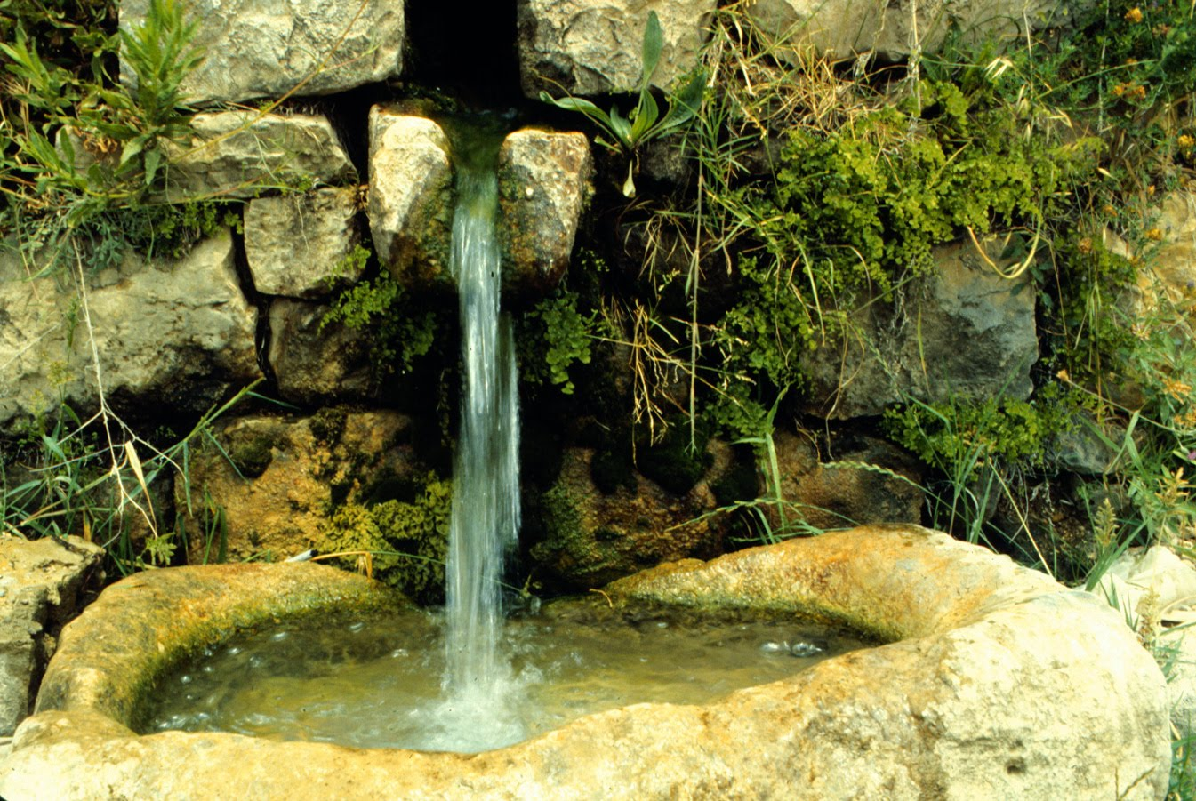 How To Find A Back Up Water Source That Doesn T Require