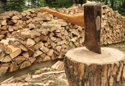 Image result for firewood