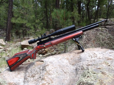 The Super-Quiet Survival Rifle That Will Keep You Hidden
