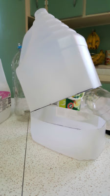 The Cheap Mini-Greenhouse That Makes Seed-Starting Easier