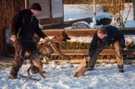 og-krumbach-trainingsbetrieb-2018-02-24-161