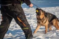 og-krumbach-trainingsbetrieb-2018-02-24-581