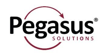 Pegasus Solution Travel Wholesale Supplier