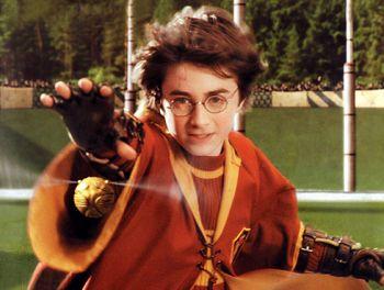 Harry Potter e il pallino magico del Quiiddich