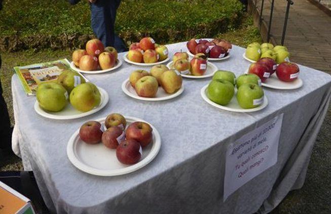 A gamalero, sabato si visita gratis il Parco dei Frutti