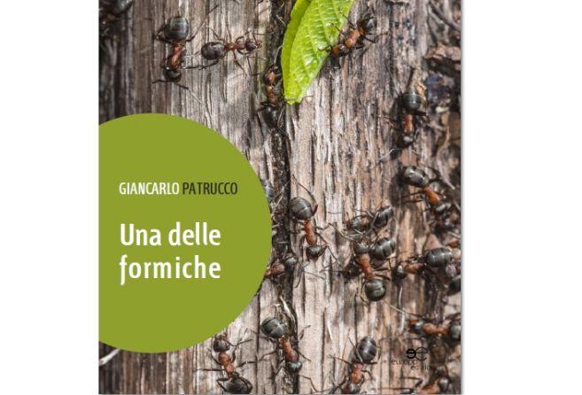 """Lo scrittore alessandrino Giancarlo Patrucco al Salone del libro con """"Una delle formiche"""""""