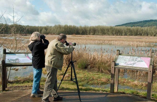 L'associazione Codibugnolo va sul monte Chiappo a vedere gli uccelli