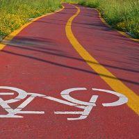 Un sondaggio per i dianesi: dove volete la pista ciclabile? Votate online su Oggi Cronaca