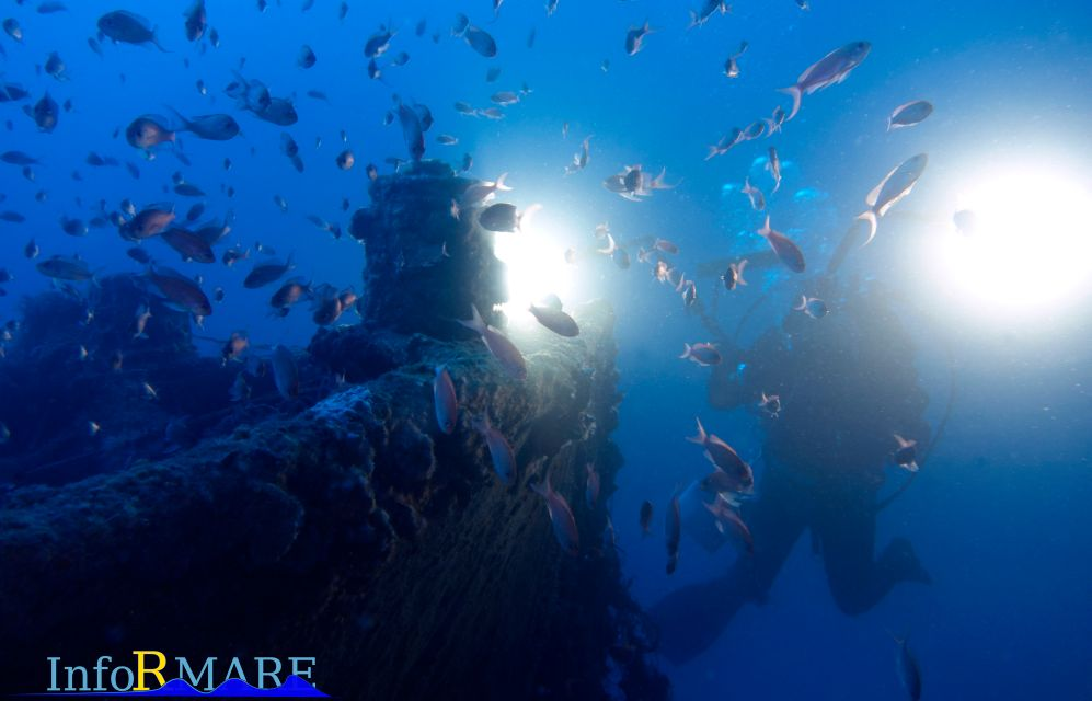 """Si chiama """"Ponente in blu"""" la nuova attività dell'Associazione """"Informare"""" di Imperia e parla anche di relitti marini"""