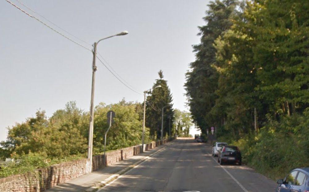 Una tortonese amante dei gatti denunciata per getto di sassi in viale Milite Ignoto a Tortona nello stesso punto dei lanci contro le auto