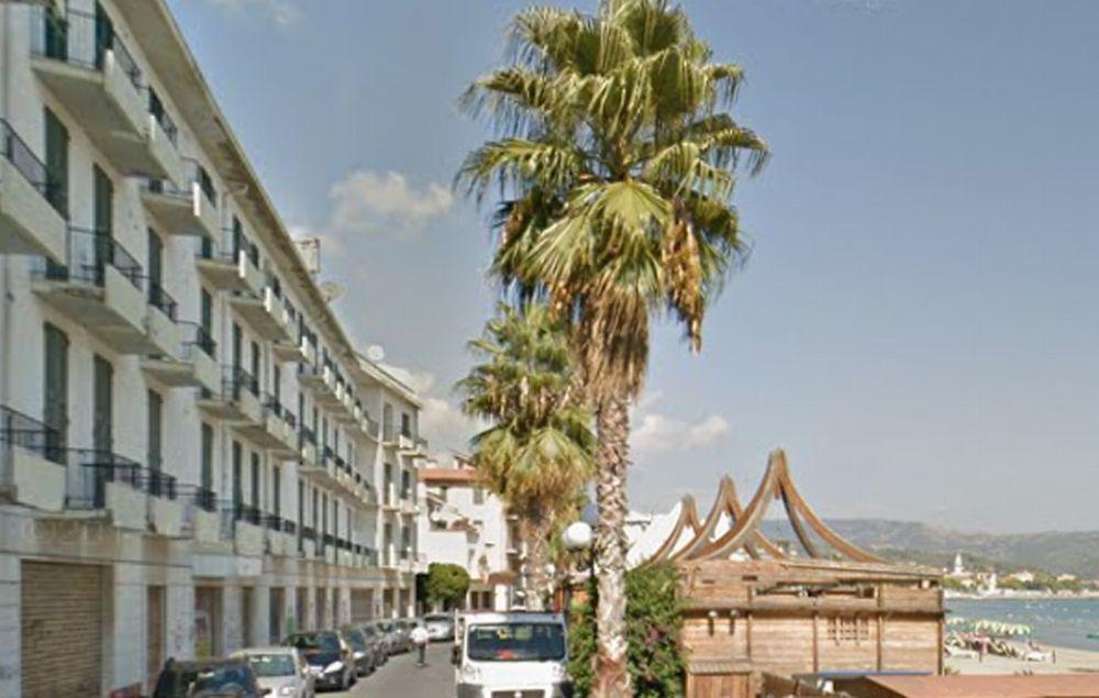 A Diano Marina si potano le palme in via Torino, da martedì vietato parcheggiare per due giorni