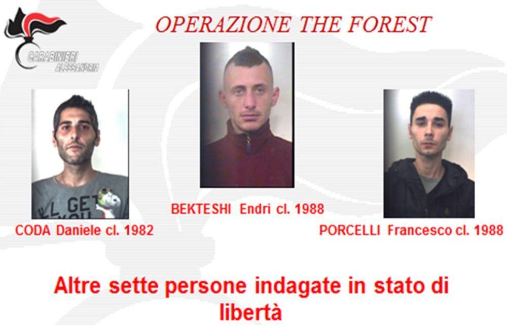 Brillante operazione dei carabinieri di Acqui Terme con 3 arresti e 7 persone denunciate