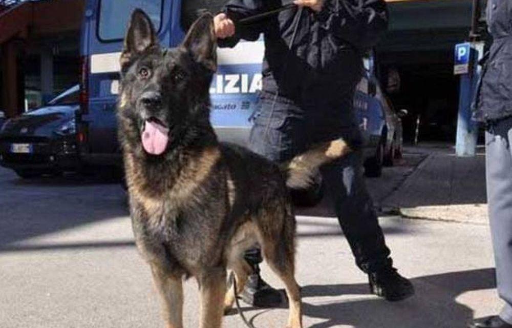 Maxi controlli della Polizia al quartiere Pista di Alessandria