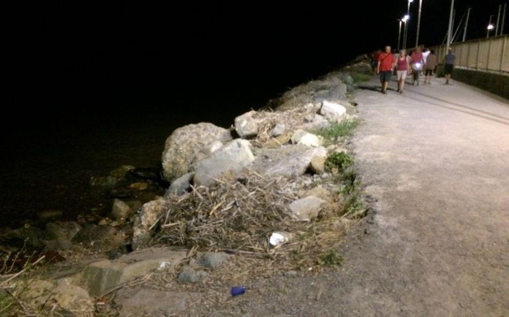 La vergogna della passeggiata al faro di Diano Marina: canne secche, erbacce e disordine. Ripulirla no?