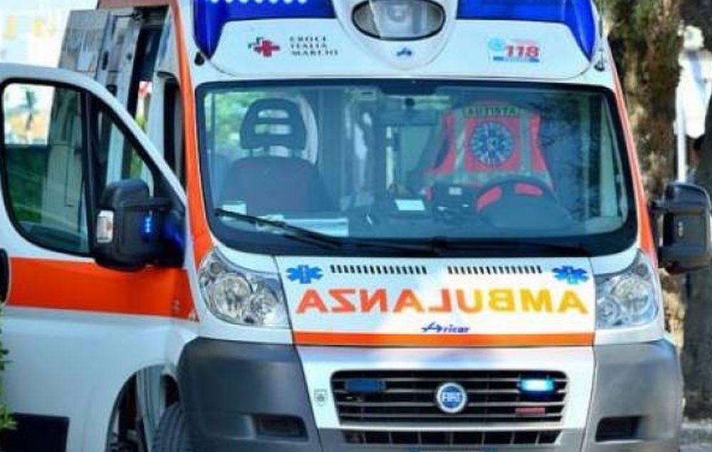 Ad Alessandria un uomo di 36 anni muore schiacciato dall'albero che stava rimuovendo