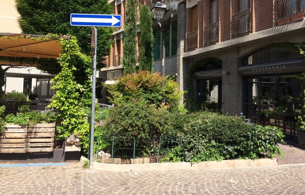 Rinviato a venerdì 24 il mercato delle erbe aromatiche in programma a Tortona in piazzetta de Amicis