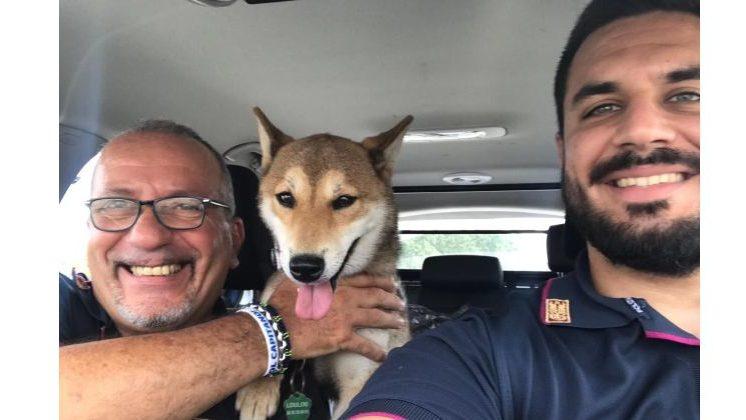 """La polstrada di Ovada ritrova """"loulou"""" cane francese abbandonato sull' A/26"""