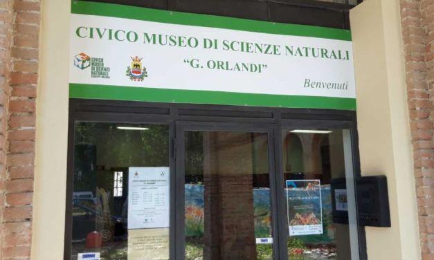 Ha riaperto il Civico Museo di Scienze Naturali di Voghera