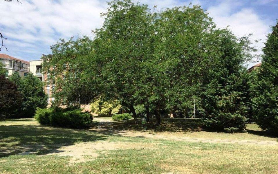 Al via la manutenzione primaverile delle aree verdi del territorio comunale di Alessandria